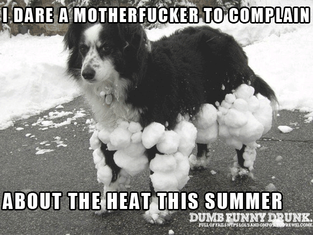Do Not Complain About The Heat