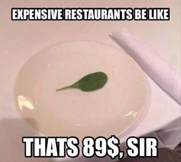 Expensive Restaurants Be Like…