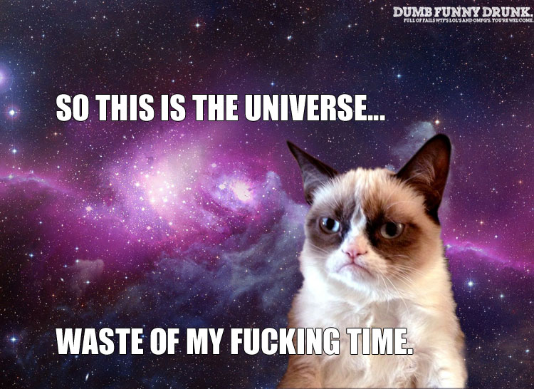 Grumpy Cat Tours The Universe