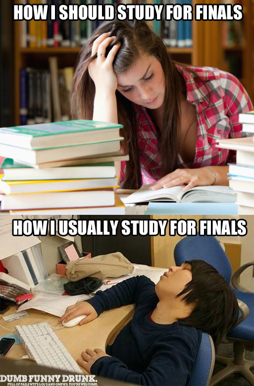 How I Should Study For Finals