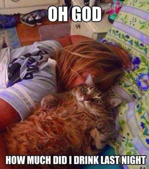 Waking Up On Saturday Like…
