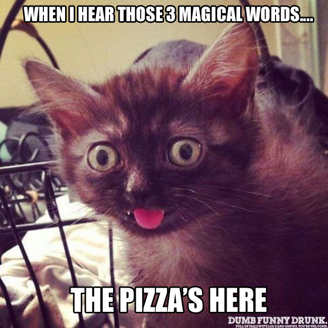 Those 3 Magical Words